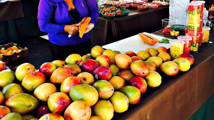 fresh fruit at the Lincoln Road Farmers Market